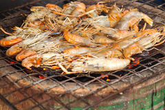 Grilled prawns. On the grill Stock Photos