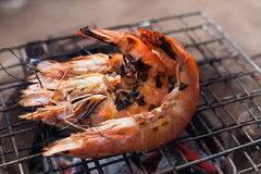 Grilled prawns on the grill royalty free stock image
