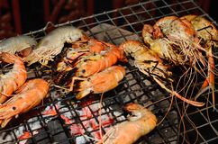 Grilled prawns on the grill Stock Images