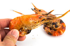 Grilled prawns in hand  on white isolate Stock Images