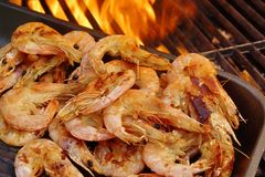 Grilled Prawns on open BBQ fire, XXXL Stock Photography