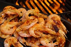 Grilled Prawns on open BBQ fire Stock Photography