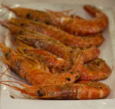 Grilled Prawns on the plate. Grilled big Prawns on the plate Royalty Free Stock Image