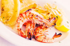 Grilled prawns with potato salad Royalty Free Stock Photography