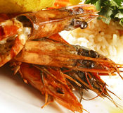 Grilled Prawns and rice Stock Images