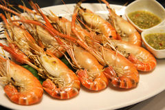 Grilled prawns. With seafood spicy sauce stock photography