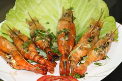 Grilled Prawns. Grilled Shrimp with butter and garlic. Grilled butter prawn. Butterfly Prawn Royalty Free Stock Photography