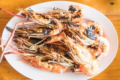 Grilled prawns or shrimps Royalty Free Stock Photos