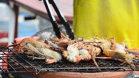 Grilled prawns on Stove stock video footage