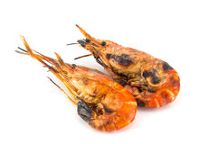 Grilled prawns on  white isolate Stock Image