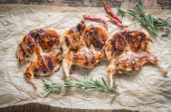 Grilled quails Stock Images