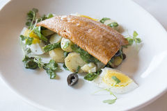 Grilled Rainbow Trout. Filet of grilled trout served on a bed of potatoes, spinach and black olives, decorated with boiled eggs and greens royalty free stock photo