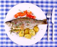 Grilled rainbow trout with red pepper, potato and lemon. Top view stock photos