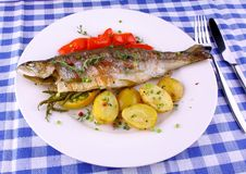 Grilled rainbow trout with red pepper, potato and rosemary Royalty Free Stock Images