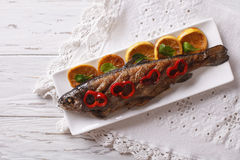 Grilled rainbow trout with vegetables. Horizontal top view Stock Photography
