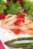 Grilled Raspberry Salmon Stock Images