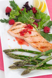 Grilled Raspberry Salmon Stock Image