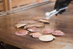 Grilled razor clams and queen scallops Stock Image