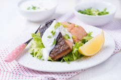 Grilled red fish fillet Royalty Free Stock Photos