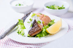 Grilled red fish fillet Stock Photos