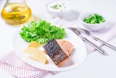 Grilled red fish fillet with lemon and green salad Stock Image