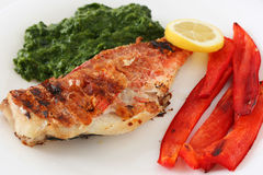 Grilled red-fish with spinach Stock Photo