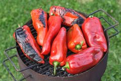 Grilled red peppers Stock Photo