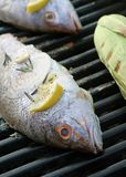Grilled Red Snapper Royalty Free Stock Photo