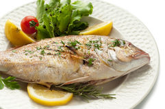 Grilled red snapper with salad Stock Photo