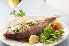 Grilled red snapper with salad Royalty Free Stock Photography