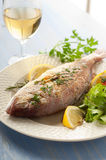 Grilled red snapper with salad Royalty Free Stock Photos
