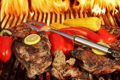 Grilled Rib Steaks and Vegetables on BBQ Grill XXXL Stock Photo