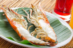 Grilled River Lobster Extra Large Size Royalty Free Stock Images