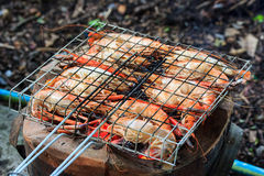 Grilled river prawns. Royalty Free Stock Photo