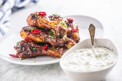 Grilled roasted and barbecue chicken legs on white plate. Grilled roasted and barbecue chicken legs on white plate and tzatziki sauce stock photography