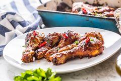 Grilled roasted and barbecue chicken legs on white plate. Grilled roasted and barbecue chicken legs on white plate with herb decoration stock image