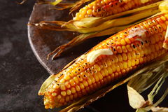 Grilled or roasted fresh corn, maize or mealies Royalty Free Stock Photos