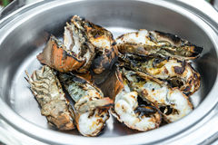 Grilled rock lobster. Fresh grilled rock lobster in buffet line Stock Photography