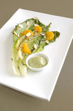 Grilled romaine salad Stock Images