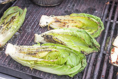 Grilled romaine salad Royalty Free Stock Photos