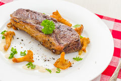 Grilled rump steak with chanterelle, cream sauce Stock Images