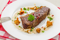 Grilled rump steak with chanterelle and cream sauce Royalty Free Stock Photography