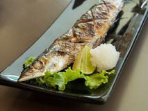 Grilled saba mackerel Stock Images