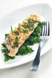 Grilled salmon. With herbs on fried spinach Stock Image