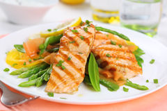 Free Grilled Salmon Royalty Free Stock Photos - 19052318