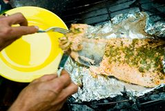 Free Grilled Salmon Stock Photo - 2657650