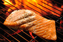 Grilled salmon. On the grill royalty free stock photo