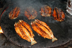 Grilled salmon. Traditional salmon grilling on a oven Royalty Free Stock Photos