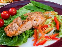 Free Grilled Salmon Stock Image - 5830411