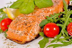 Grilled salmon with arugula and tomatoes Royalty Free Stock Image